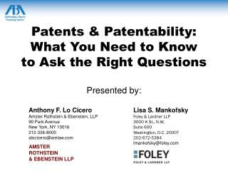 Patents & Patentability:  What You Need to Know  to Ask the Right Questions