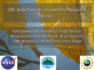 SBC Kelp Forests on Local to Regional Scales