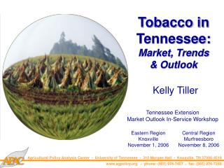 Tobacco in Tennessee: Market, Trends & Outlook