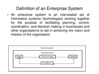 Definition of an Enterprise System