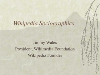 Wikipedia Sociographics