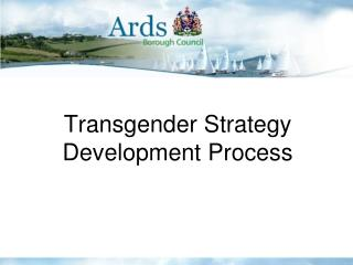 Transgender Strategy Development Process