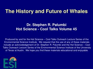 The History and Future of Whales