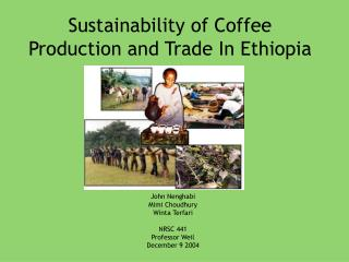 Sustainability of Coffee Production and Trade In Ethiopia