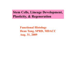 Stem Cells, Lineage Development,  Plasticity, & Regeneration