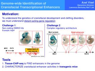 Genome-wide Identification of Craniofacial Transcriptional Enhancers