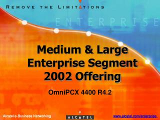 Medium & Large Enterprise Segment 2002 Offering