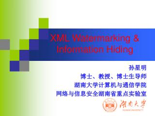 XML Watermarking & Information Hiding