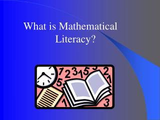 What is Mathematical 			Literacy?