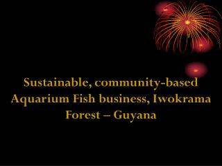 Sustainable, community-based Aquarium Fish business, Iwokrama Forest – Guyana