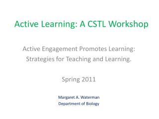 Active Learning: A CSTL Workshop
