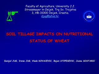 SOIL TILLAGE IMPACTS ON NUTRITIONAL STATUS OF WHEAT