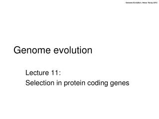 Genome evolution
