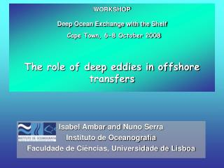 Isabel  Ambar and  Nuno Serra Instituto de Oceanografia