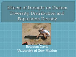 Effects of Drought on Diatom Diversity, Distribution and Population Density
