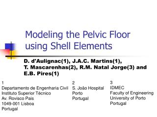 Modeling the Pelvic Floor  using Shell Elements
