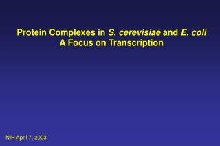 Protein Complexes in  S. cerevisiae  and  E. coli A Focus on Transcription