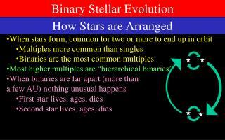 Binary Stellar Evolution