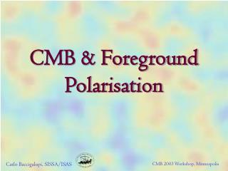 CMB & Foreground Polarisation