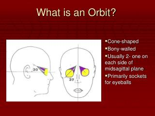 What is an Orbit?