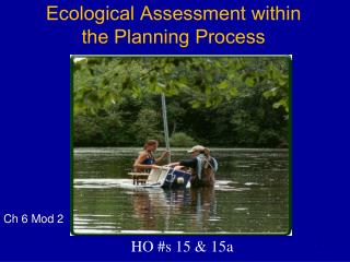Ecological Assessment  within the Planning Process