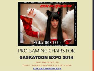PRO Gaming Chairs for Saskatoon Expo 2014 on SALE
