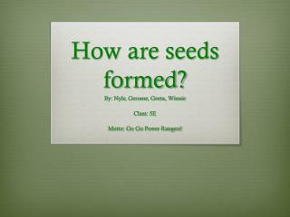 How are seeds formed?