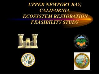 UPPER NEWPORT BAY, CALIFORNIA  ECOSYSTEM RESTORATION FEASIBILITY STUDY