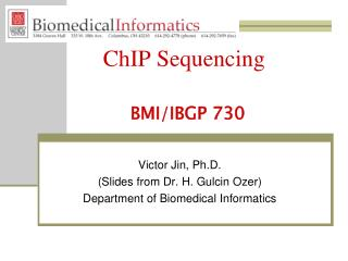 ChIP Sequencing BMI/IBGP 730
