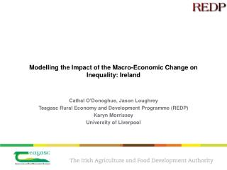 Modelling the Impact of the Macro-Economic Change on Inequality: Ireland