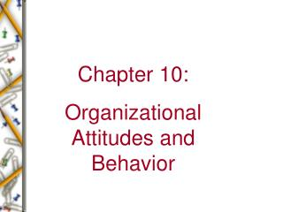 Chapter 10: Organizational Attitudes and Behavior