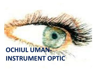 OCHIUL  UMAN - INSTRUMENT OPTIC