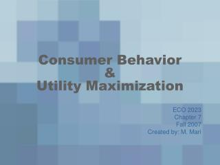 Consumer Behavior    Utility Maximization