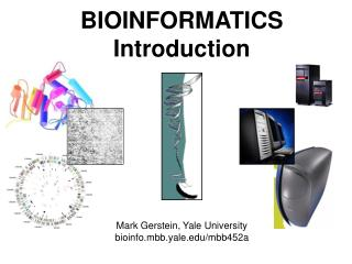 BIOINFORMATICS Introduction