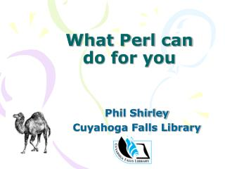 What Perl can do for you
