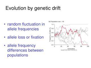 Evolution by genetic drift