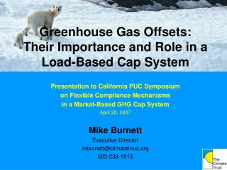 Greenhouse Gas Offsets: Their Importance and Role in a Load-Based Cap System