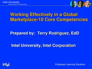Working Effectively in a Global Marketplace-10 Core Competencies