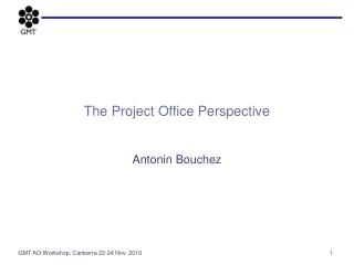 The Project Office Perspective