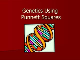 Genetics Using       Punnett Squares