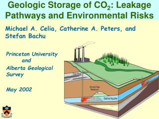 Geologic Storage of CO 2 : Leakage Pathways and Environmental Risks