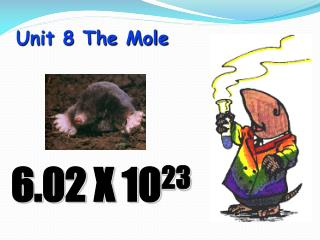 Unit 8 The Mole