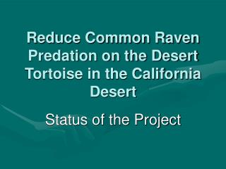 Reduce Common Raven Predation on the Desert Tortoise in the California Desert