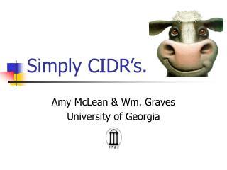 Simply CIDR's.