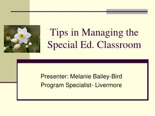 Tips in Managing the  Special Ed. Classroom