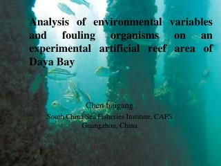 Chen haigang South China Sea Fisheries Institute, CAFS Guangzhou, China