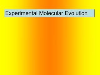 Experimental Molecular Evolution