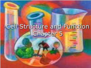 Cell Structure and Function Chapter 5