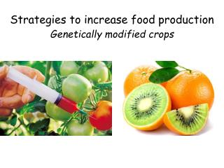 Strategies to increase food production Genetically modified crops