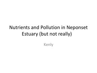 Nutrients and Pollution in Neponset Estuary (but not really)